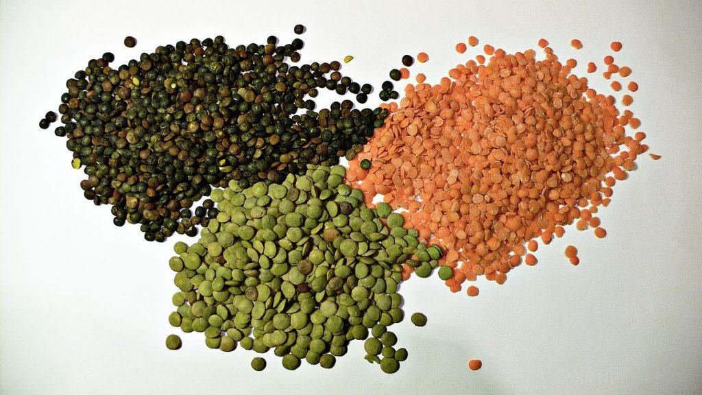 types of lentil